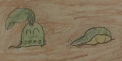 Chikorita and Cyndaquill in a Muddy Time