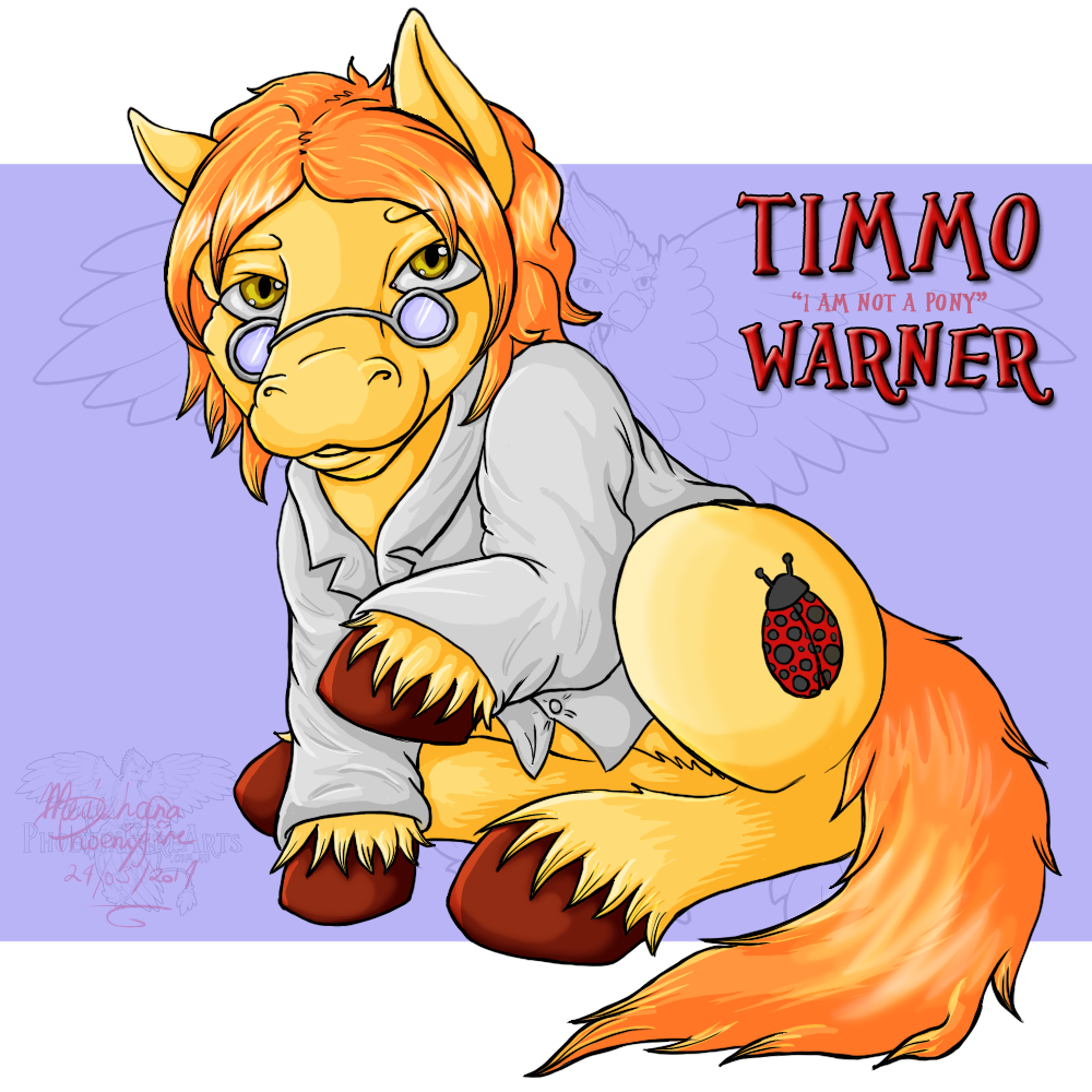 [Donation Commission] MLP Timmo