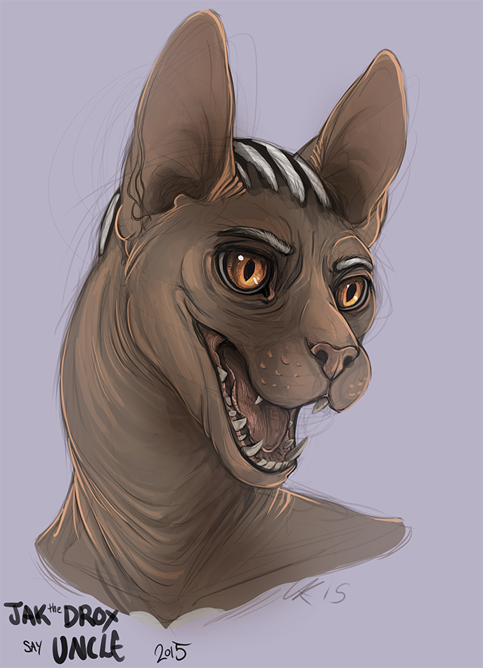 Expression study-Sphynx Cat(colab)