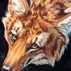 avatar of VesperTigyote
