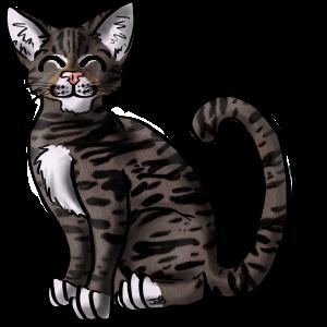 avatar for TabbyTim
