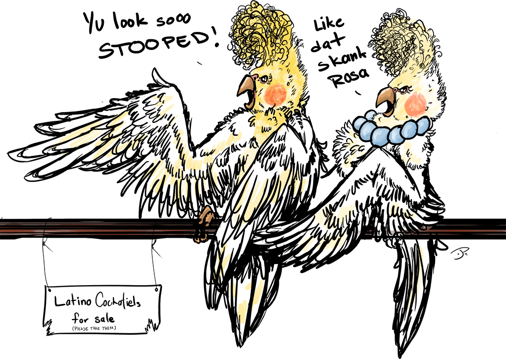 [Commission]: Latino Cockatiels