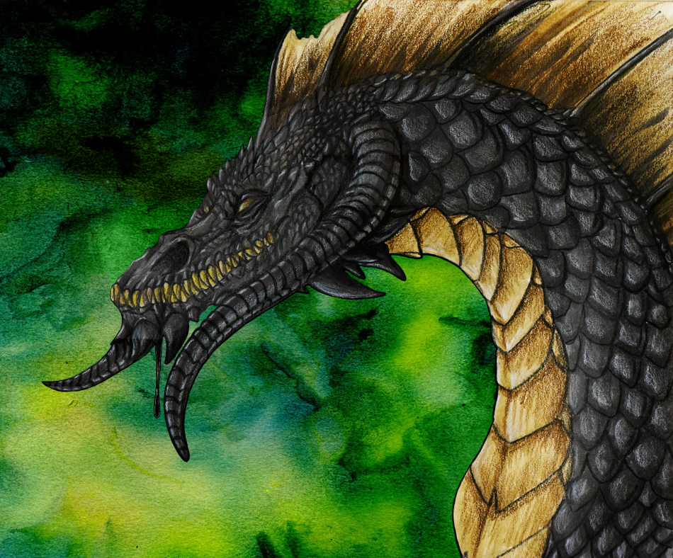 Most recent image: Black Dragon