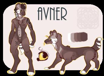 Avner Reference Sheet