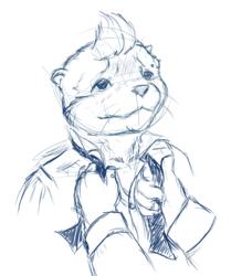 Pre-Sponge Otter