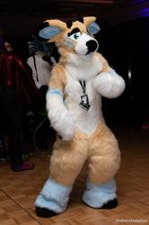 FurDU 2018: Luri Dancing