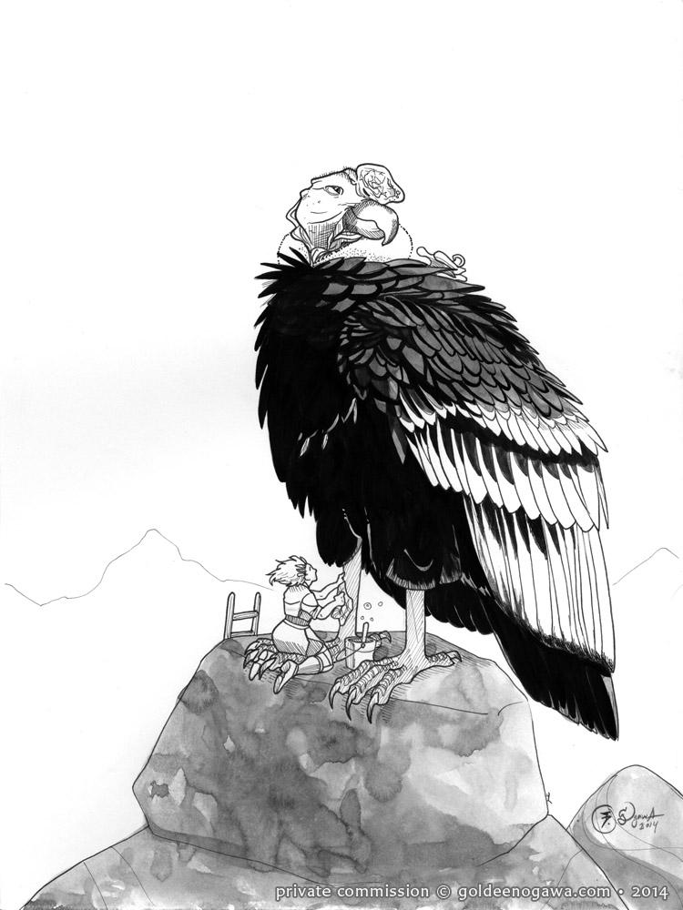 Condor for Floppybelly
