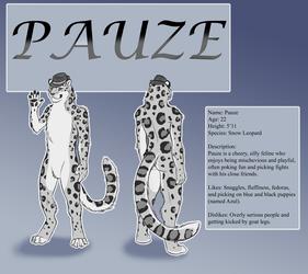 Reference Sheet -- Pauze
