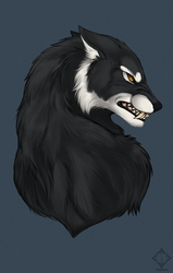 C: Silverfoxwolf