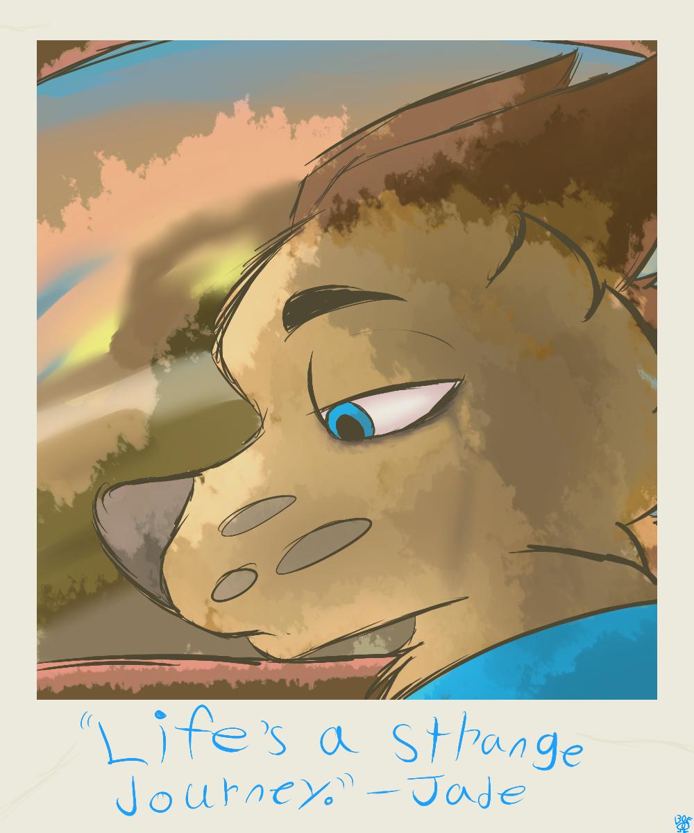 Life's a strange journey
