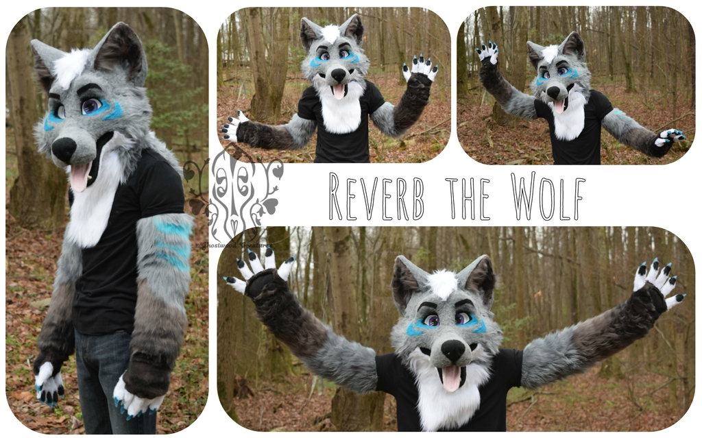 [//Comission] Reverb the Wolf