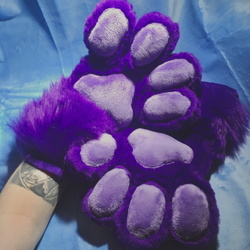 Purple Handpaws With Lavender Pawpads