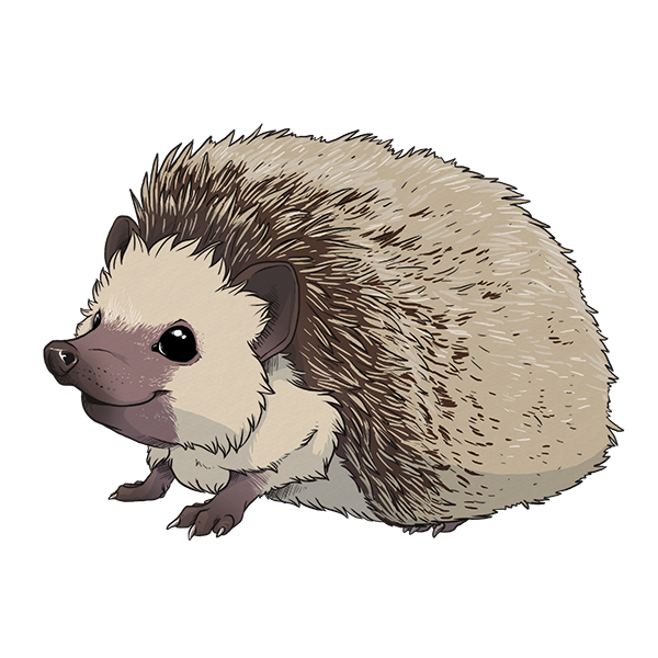 Hedgehog Sticker 1