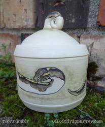 Pied Ball Python Jar