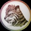 avatar of zeddicous