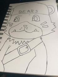 bearmon wip