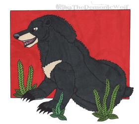 Asian Black Bear (Moon Bear)