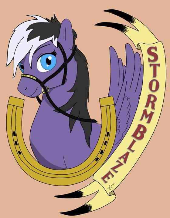 pony badge