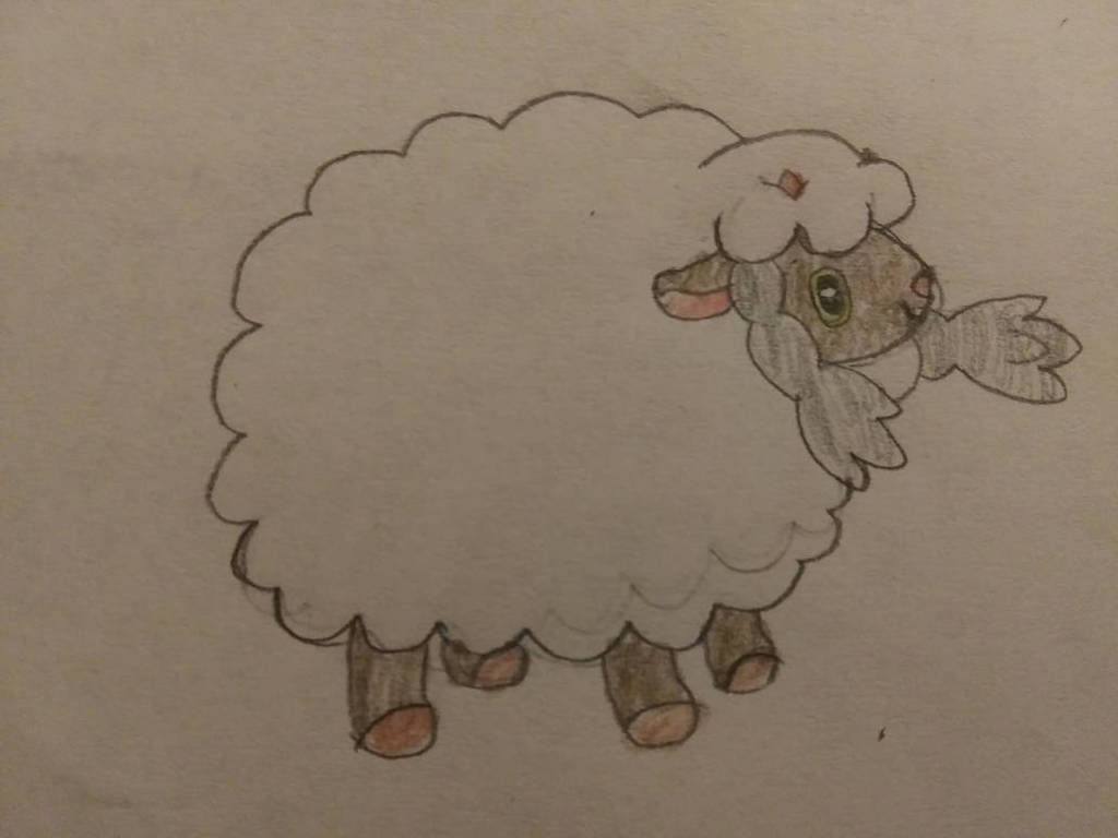 Most recent image: Wooloo