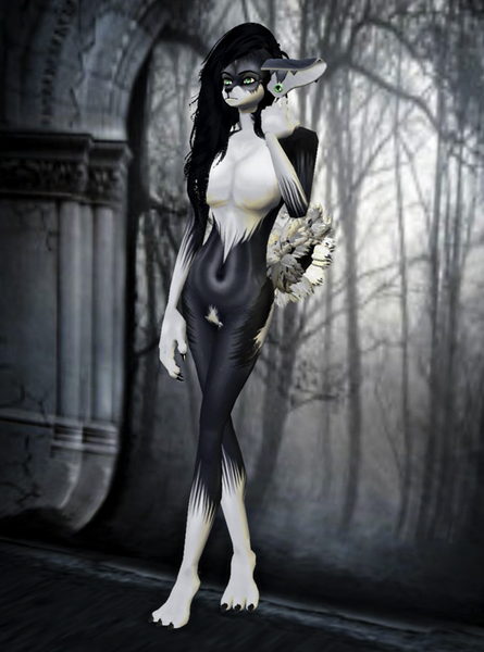 Sybil Witch Dog