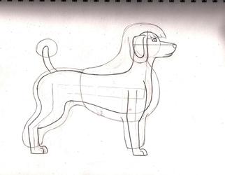 Breed Study: Standard Poodle (Scandinavian clip overlay)