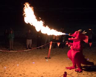 FurDU 2017: More Dragon Fire Show
