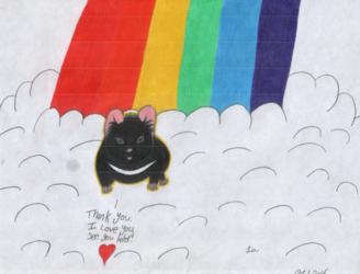 The Rainbow Bridge - Hammy