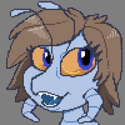 Salbug Pixel Avatar