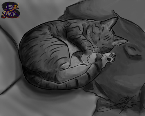 Sleeps - Cat portrait - Digital Art