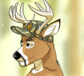 Wild stag