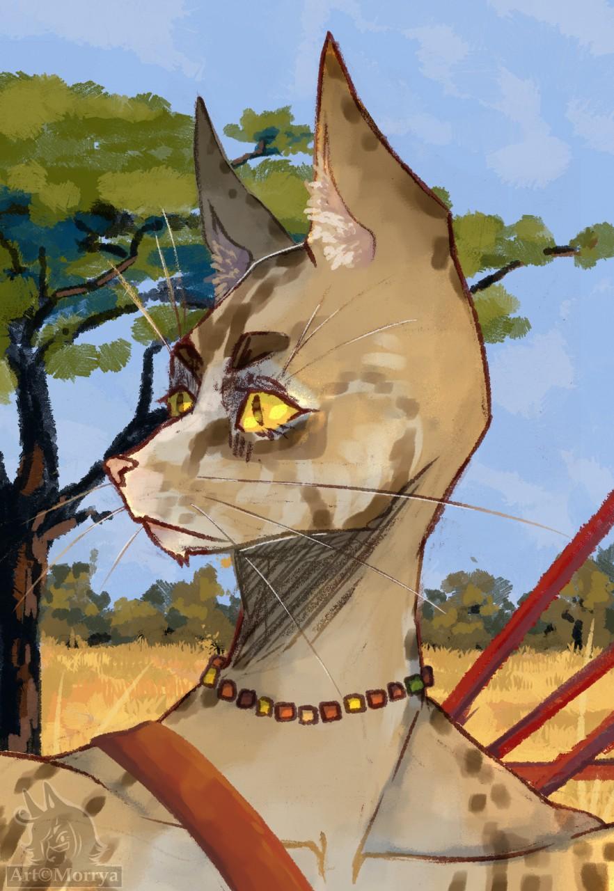 Most recent image: Savannah cat