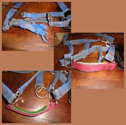 Horse holder 2