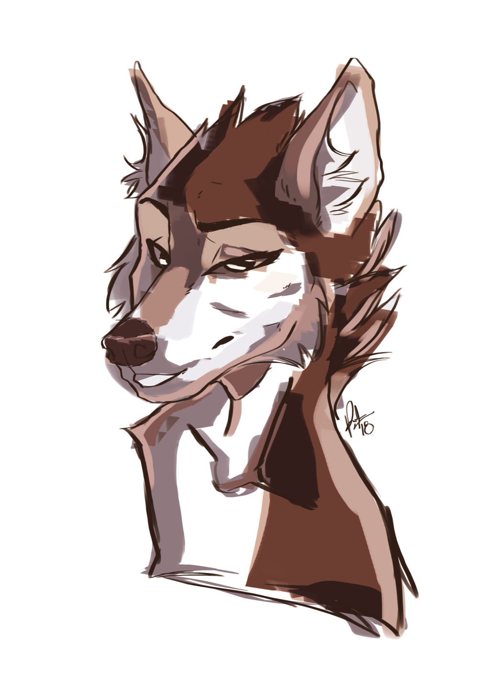 Portrait of a Wolf - By PandashK