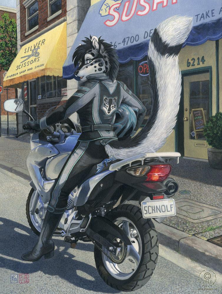 Tani's Bike