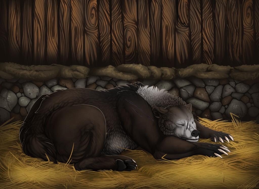 [C] Sleepy Bear   For Hurse