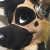 avatar of Dekks_Shepherd