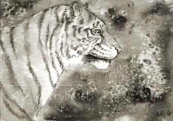 Inktober #16   Tiger   ACEO