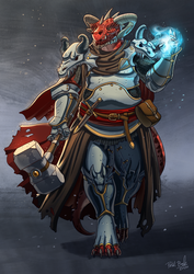 Paladin of Conquest