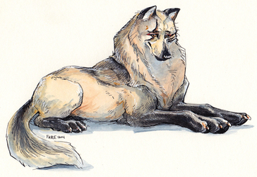 Regal Wolf Lady
