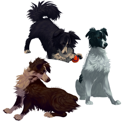 Fluffy Puppies -doodle-
