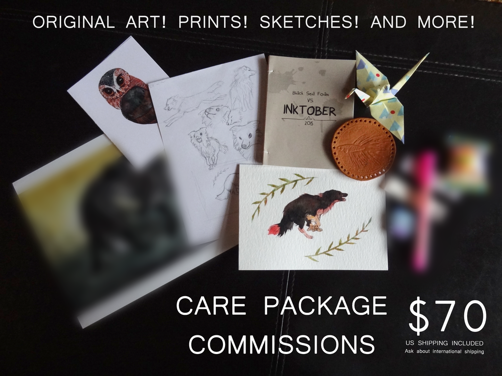 Most recent image: CARE PACKAGE COMMISSIONS