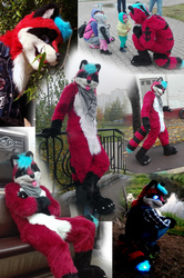 Eric raccoon fursuit - commission