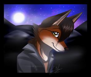 .:GA:. The Fox-Coy at Night