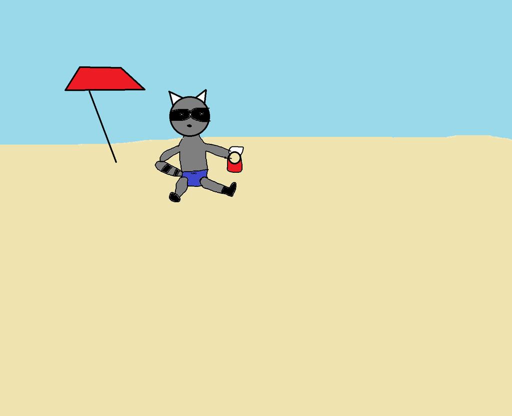 Little raccoon's vacation photo