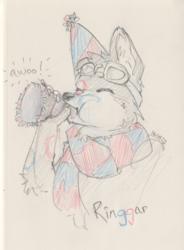 Ringgar Birthday Awoos
