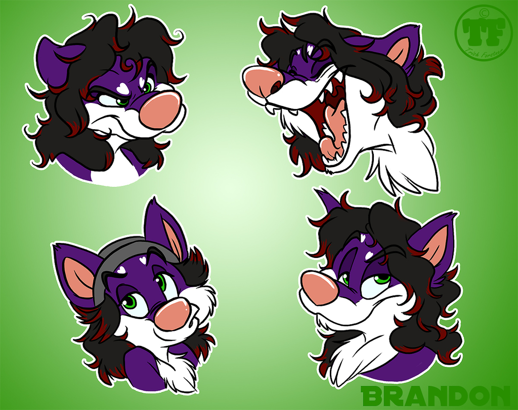 Expression sheet by Nanook