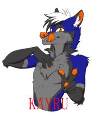 Kayru FE2018 Badge