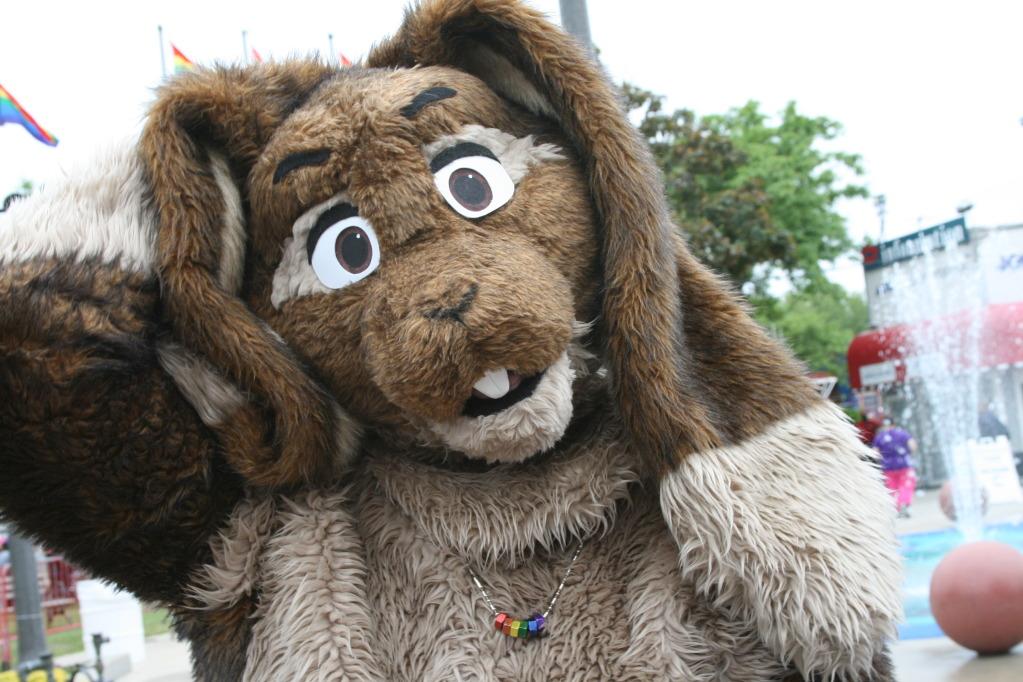 Milwaukee Pridefest, 2010- fursuiting