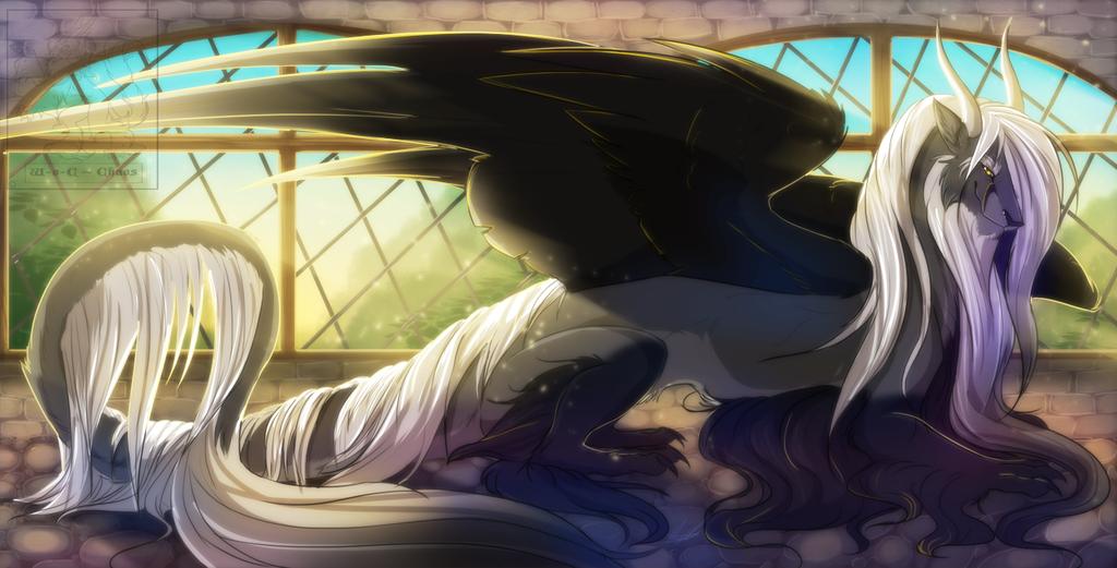 Commission: Evening Sun