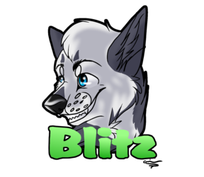 Blitz badge